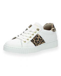 Witte sneakers Leopard