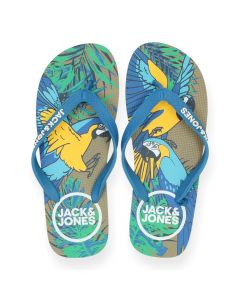 Blauwe slippers Animals Ara