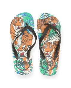 Bruine teenslippers Animal Tigers