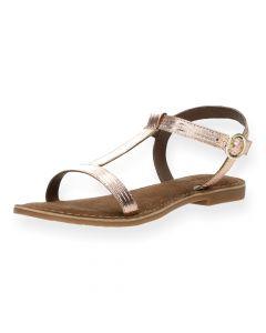 Roze sandalen Gabiano