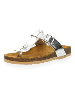 Zilveren slippers