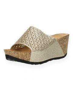 Gouden slippers