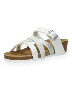 Grijze slippers
