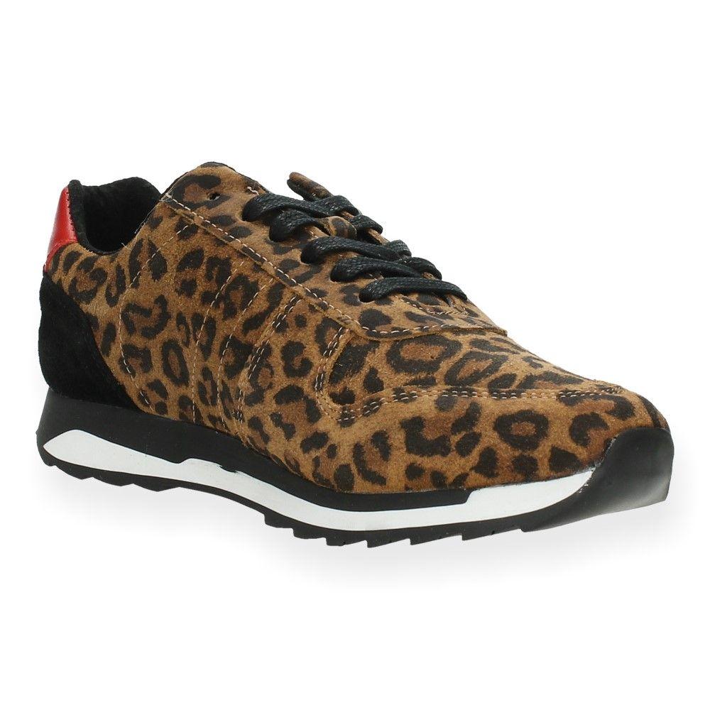 Van Le Post Sneakers Xchange Luipaardprint lJuT3FKc1