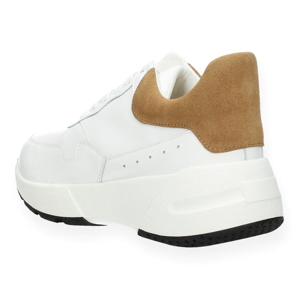Van r iCamel F Sneakers Witte osrdthQCBx